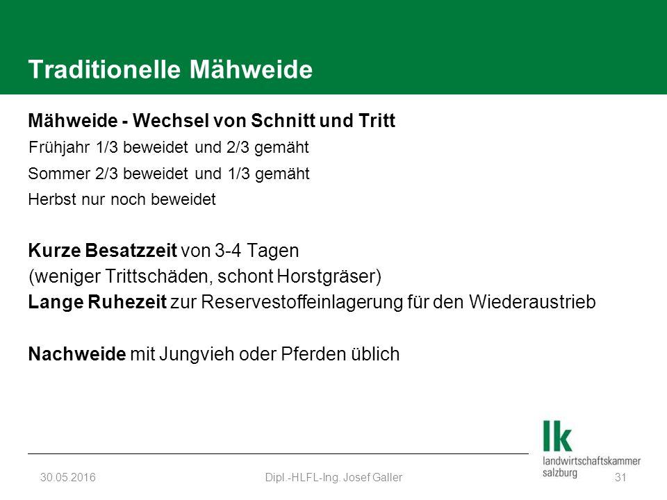 Traditionelle Mähweide Mähweide - Wechsel von Schnitt und Tritt Frühjahr 1/3 beweidet und 2/3 gemäht Sommer 2/3 beweidet und 1/3 gemäht Herbst nur noc