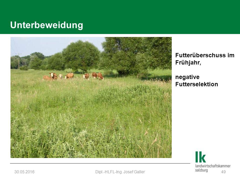 Unterbeweidung 30.05.2016Dipl.-HLFL-Ing. Josef Galler49 Futterüberschuss im Frühjahr, negative Futterselektion