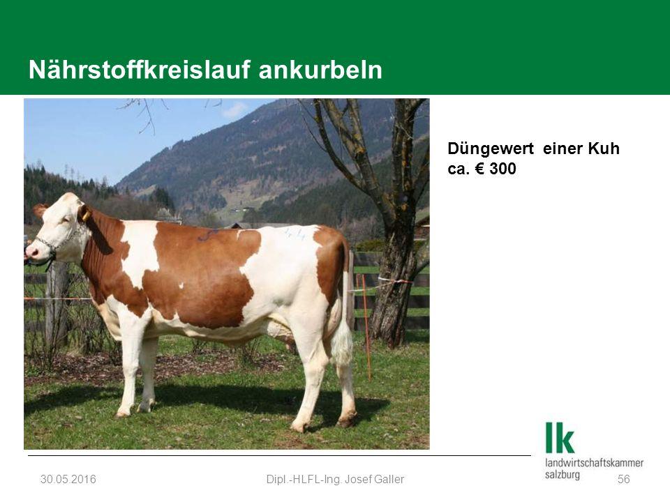 Nährstoffkreislauf ankurbeln 30.05.2016Dipl.-HLFL-Ing. Josef Galler56 Düngewert einer Kuh ca. € 300