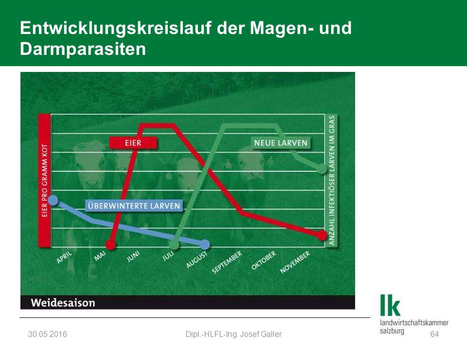 Entwicklungskreislauf der Magen- und Darmparasiten 30.05.2016Dipl.-HLFL-Ing. Josef Galler64