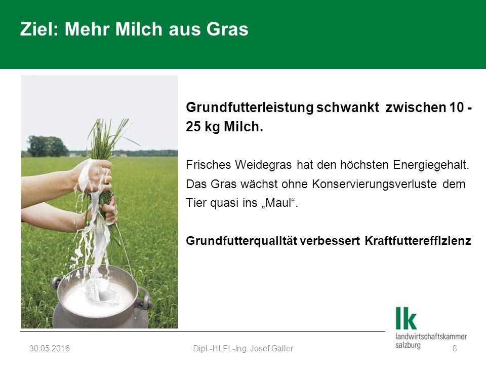Ziel: Mehr Milch aus Gras Grundfutterleistung schwankt zwischen 10 - 25 kg Milch. Frisches Weidegras hat den höchsten Energiegehalt. Das Gras wächst o