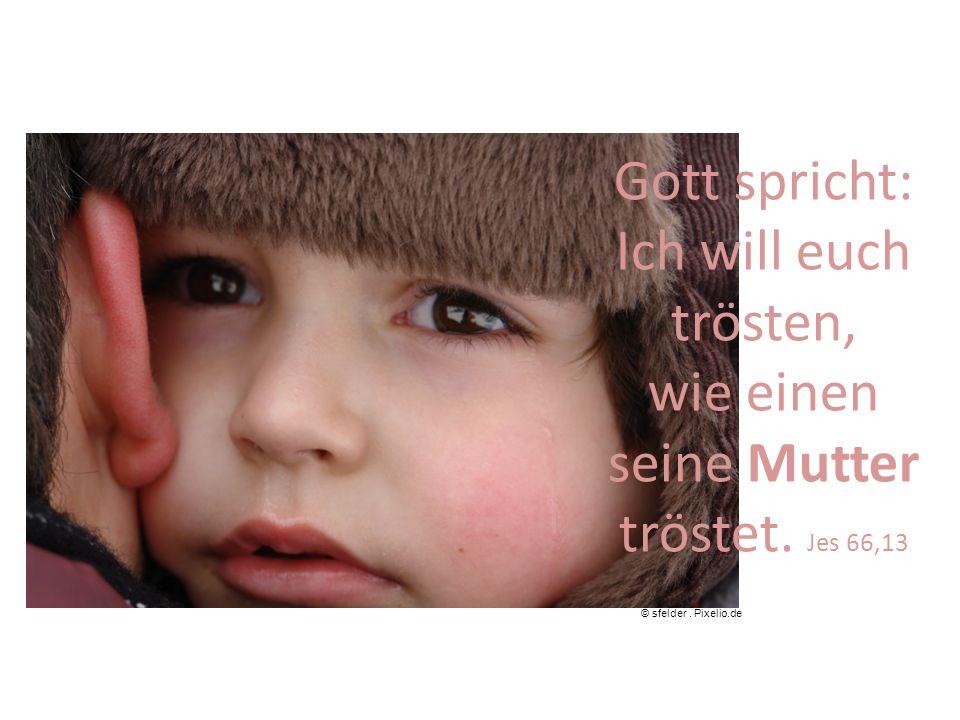 Gott spricht: Ich will euch trösten, wie einen seine Mutter tröstet. Jes 66,13 © sfelder. Pixelio.de