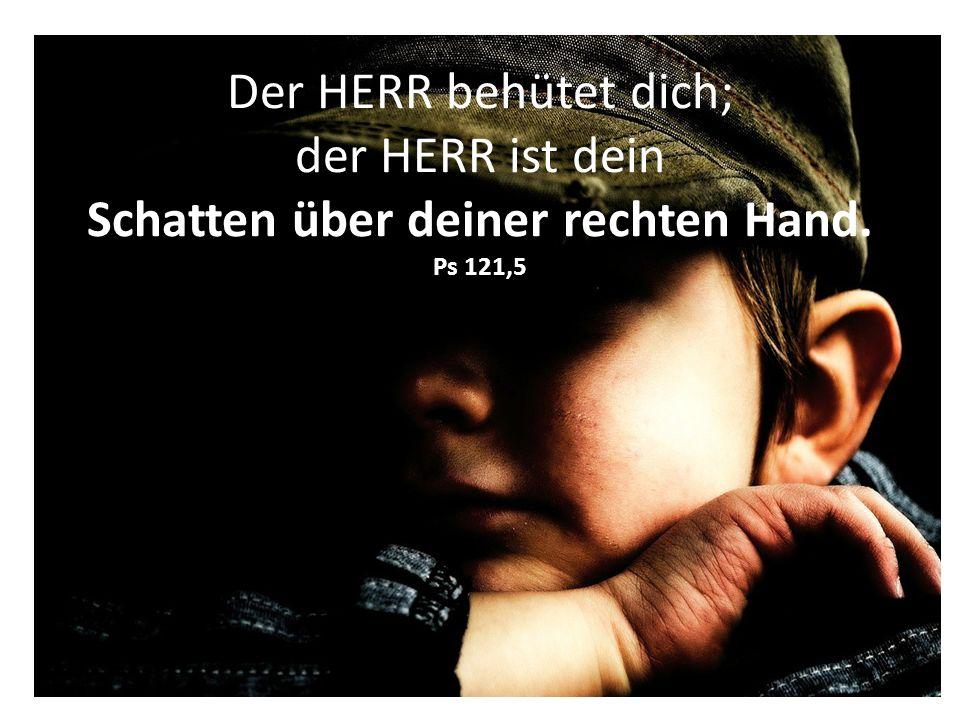 Der HERR behütet dich; der HERR ist dein Schatten über deiner rechten Hand. Ps 121,5