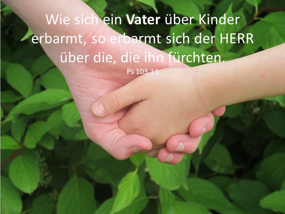 Wie sich ein Vater über Kinder erbarmt, so erbarmt sich der HERR über die, die ihn fürchten. Ps 103,13
