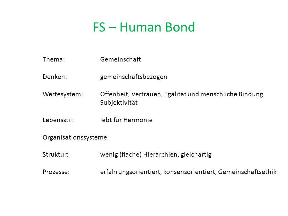 FS – Human Bond Thema: Gemeinschaft Denken: gemeinschaftsbezogen Wertesystem: Offenheit, Vertrauen, Egalität und menschliche Bindung Subjektivität Lebensstil: lebt für Harmonie Organisationssysteme Struktur: wenig (flache) Hierarchien, gleichartig Prozesse: erfahrungsorientiert, konsensorientiert, Gemeinschaftsethik