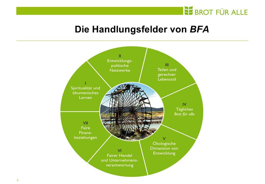 4 Die Handlungsfelder von BFA