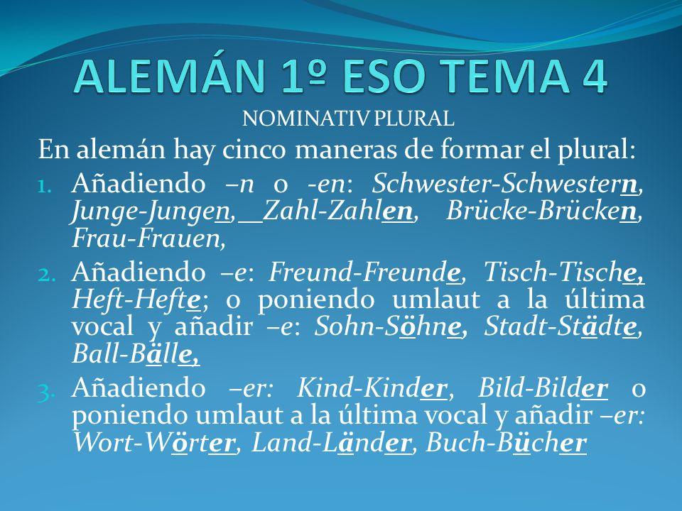 NOMINATIV PLURAL En alemán hay cinco maneras de formar el plural: 1.