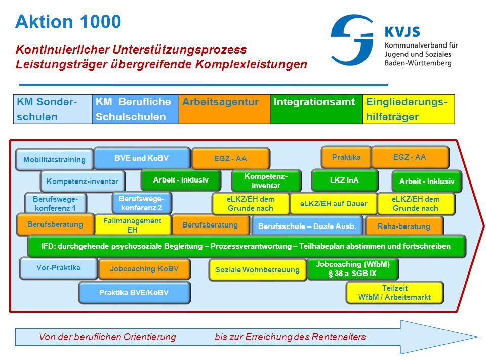 Aktion 1000 Kontinuierlicher Unterstützungsprozess Leistungsträger übergreifende Komplexleistungen 41 Mobilitätstraining Berufswege- konferenz 1 Kompe