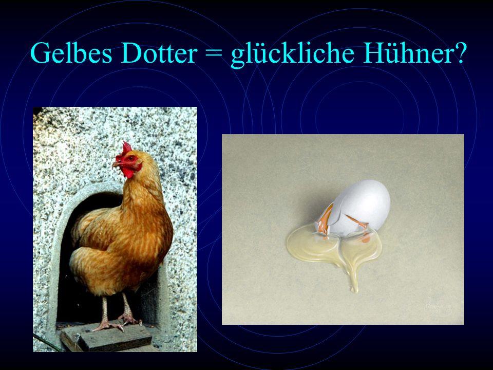 Gelbes Dotter = glückliche Hühner?