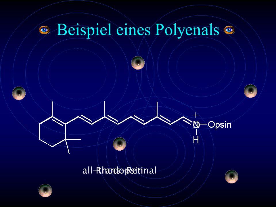 Beispiel eines Polyenals all-trans-Retinal Rhodopsin +