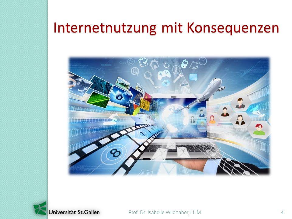 Prof. Dr. Isabelle Wildhaber, LL.M.4 Internetnutzung mit Konsequenzen