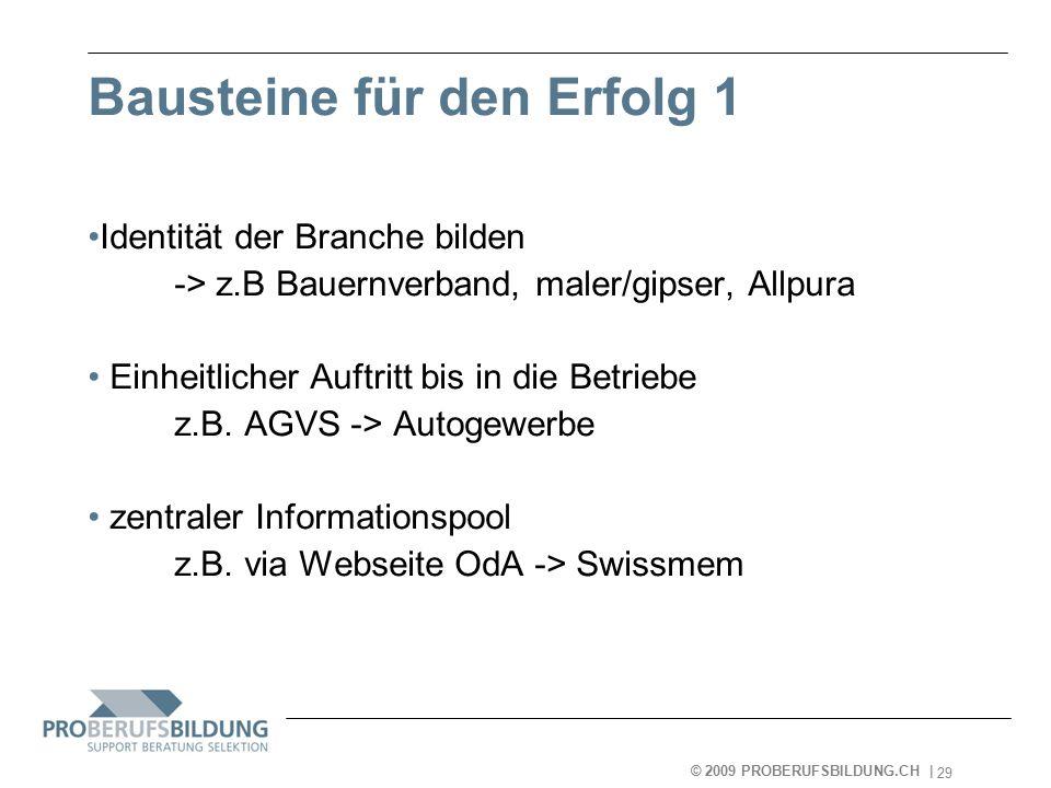 © 2009 PROBERUFSBILDUNG.CH | 2007-05-15 29 Bausteine für den Erfolg 1 Identität der Branche bilden -> z.B Bauernverband, maler/gipser, Allpura Einheitlicher Auftritt bis in die Betriebe z.B.