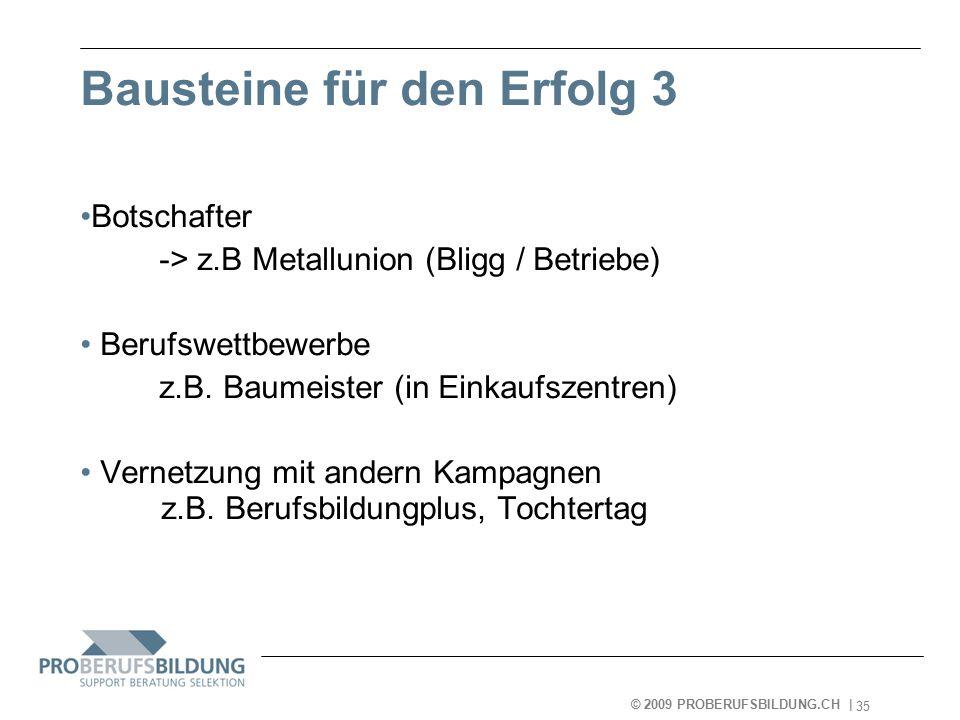 © 2009 PROBERUFSBILDUNG.CH | 2007-05-15 35 Bausteine für den Erfolg 3 Botschafter -> z.B Metallunion (Bligg / Betriebe) Berufswettbewerbe z.B.