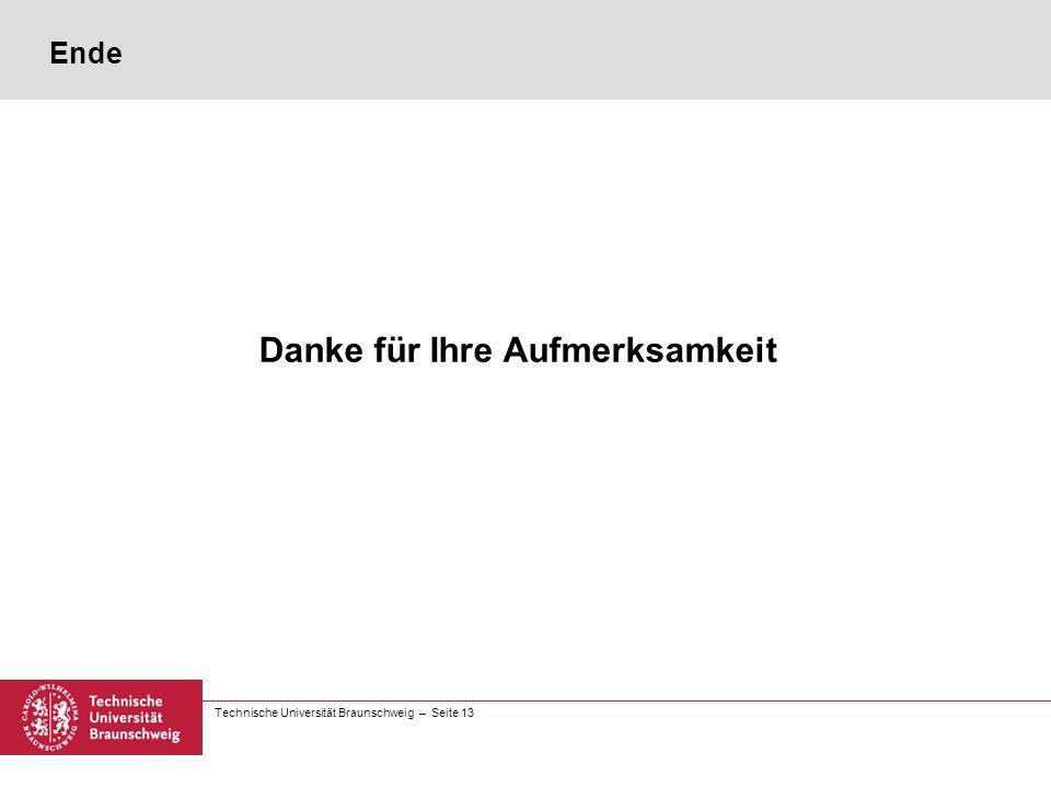 Technische Universität Braunschweig – Seite 13 Ende Danke für Ihre Aufmerksamkeit