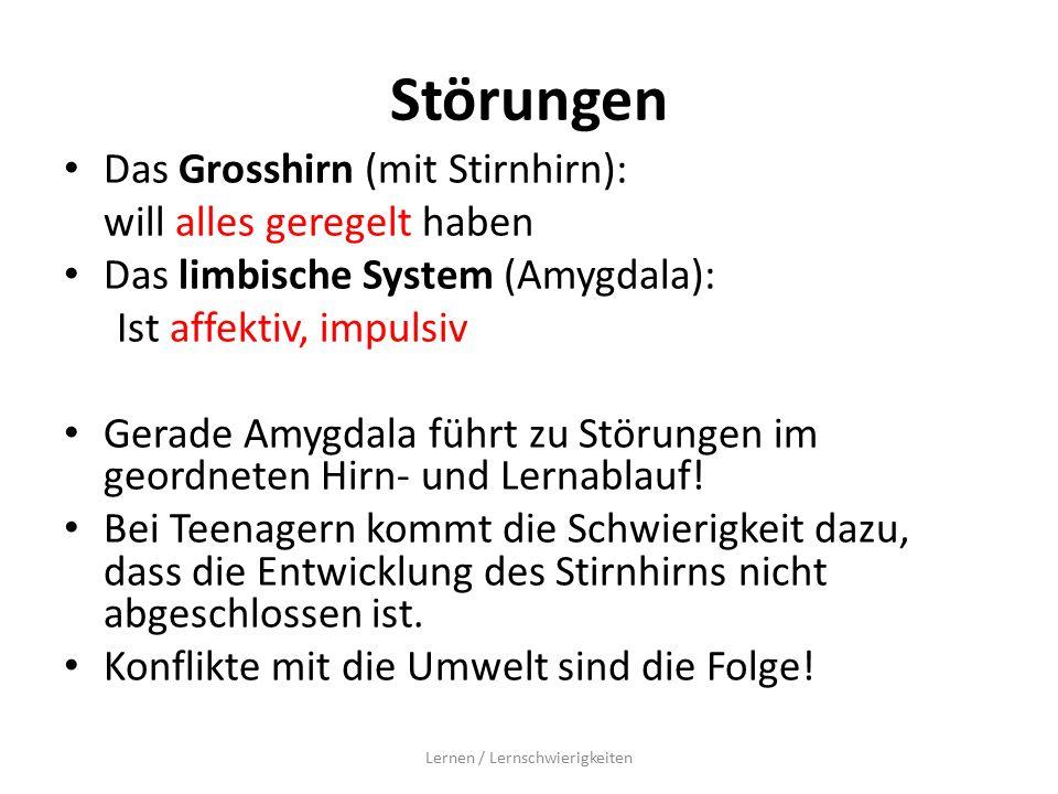 Störungen Das Grosshirn (mit Stirnhirn): will alles geregelt haben Das limbische System (Amygdala): Ist affektiv, impulsiv Gerade Amygdala führt zu Störungen im geordneten Hirn- und Lernablauf.