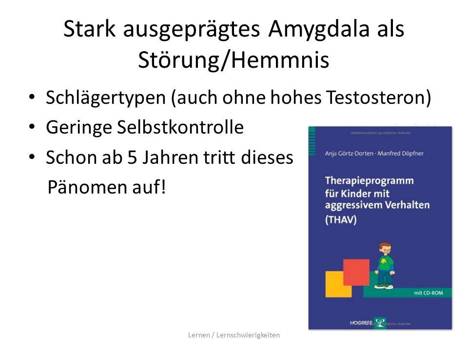 Stark ausgeprägtes Amygdala als Störung/Hemmnis Schlägertypen (auch ohne hohes Testosteron) Geringe Selbstkontrolle Schon ab 5 Jahren tritt dieses Pänomen auf.