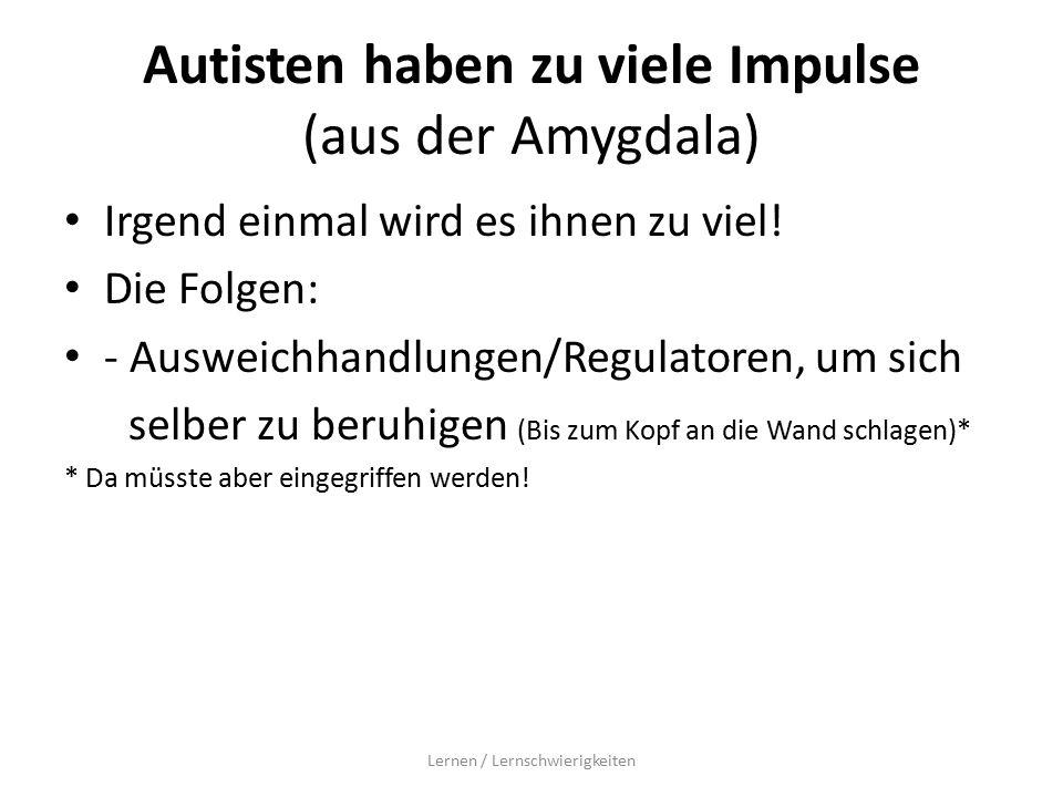 Autisten haben zu viele Impulse (aus der Amygdala) Irgend einmal wird es ihnen zu viel.