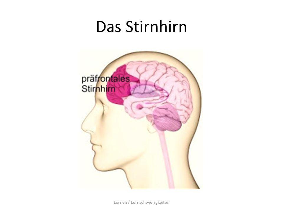 Das Stirnhirn Lernen / Lernschwierigkeiten