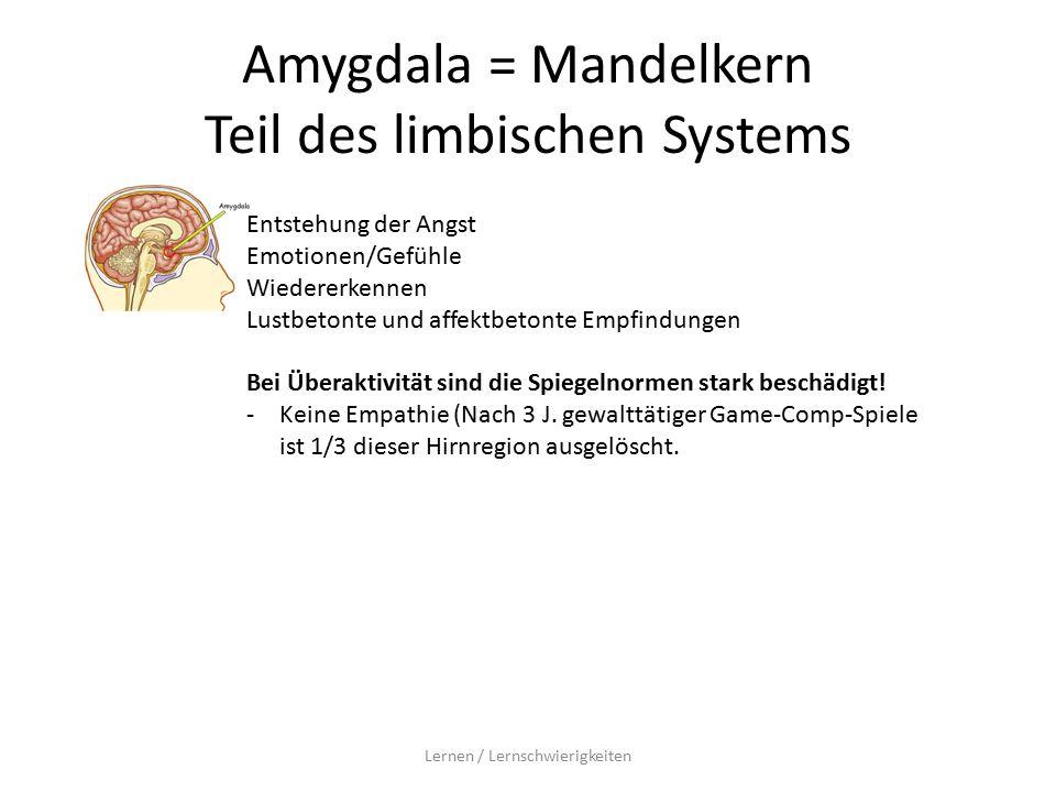 Amygdala = Mandelkern Teil des limbischen Systems Lernen / Lernschwierigkeiten Entstehung der Angst Emotionen/Gefühle Wiedererkennen Lustbetonte und affektbetonte Empfindungen Bei Überaktivität sind die Spiegelnormen stark beschädigt.