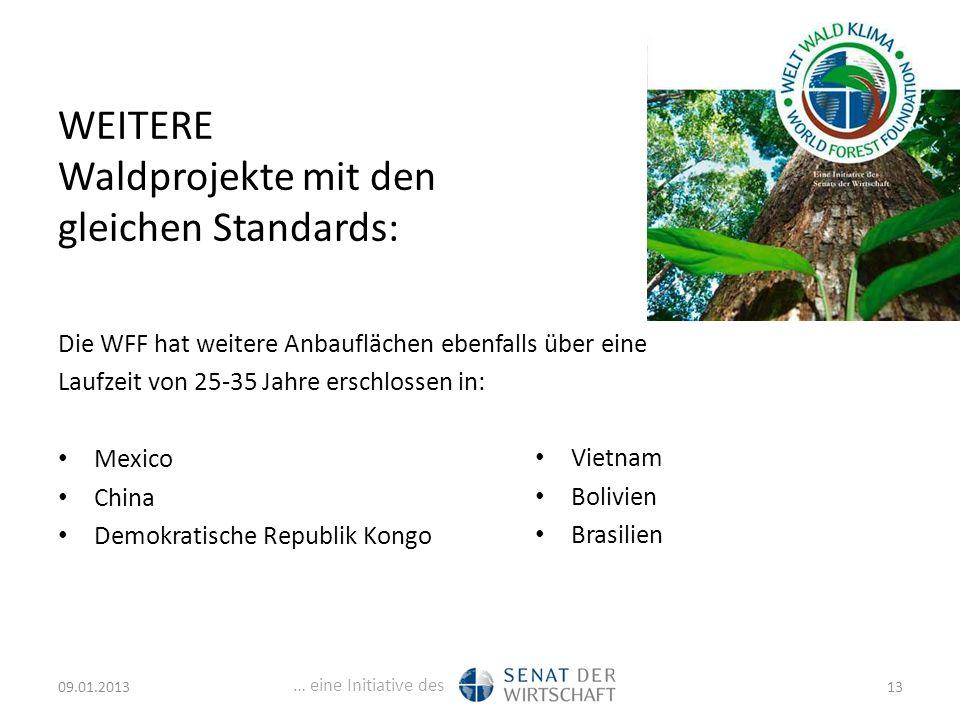 … eine Initiative des WEITERE Waldprojekte mit den gleichen Standards: Die WFF hat weitere Anbauflächen ebenfalls über eine Laufzeit von 25-35 Jahre erschlossen in: Mexico China Demokratische Republik Kongo Vietnam Bolivien Brasilien 09.01.201313