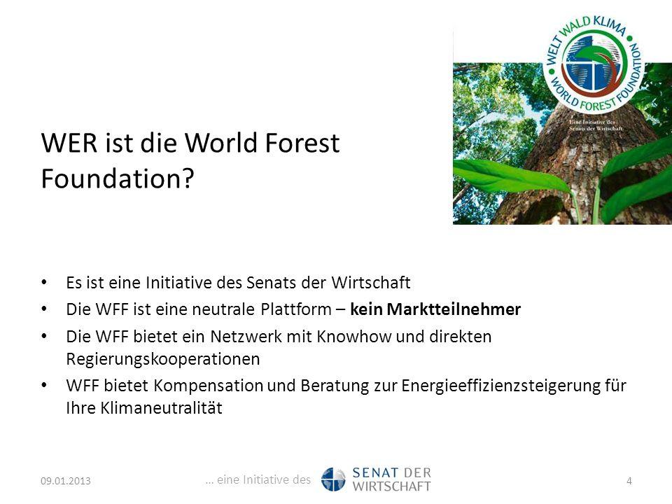 … eine Initiative des WER ist die World Forest Foundation.