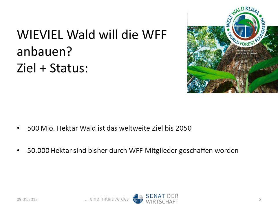 … eine Initiative des WIEVIEL Wald will die WFF anbauen.