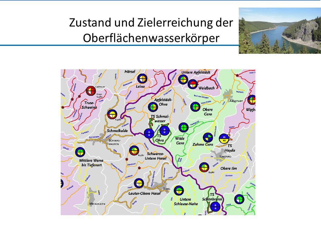 Zustand und Zielerreichung der Oberflächenwasserkörper