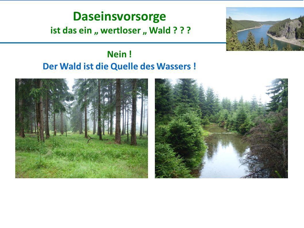 """Daseinsvorsorge ist das ein """" wertloser """" Wald ? ? ? Nein ! Der Wald ist die Quelle des Wassers !"""