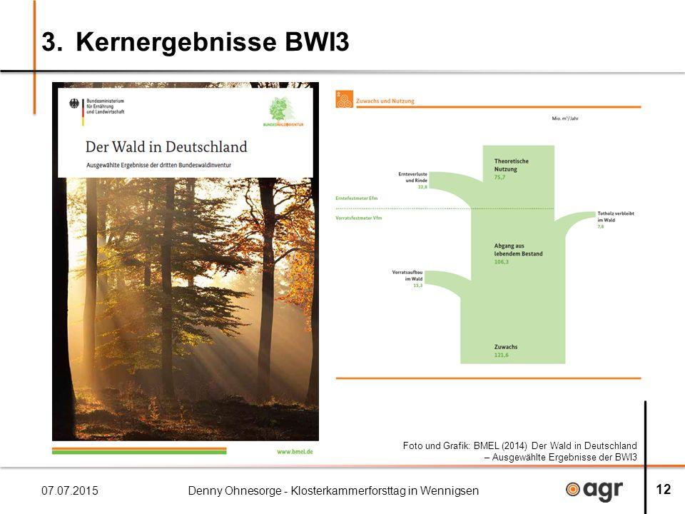 3. Kernergebnisse BWI3 07.07.2015Denny Ohnesorge - Klosterkammerforsttag in Wennigsen 12 Foto und Grafik: BMEL (2014) Der Wald in Deutschland – Ausgew