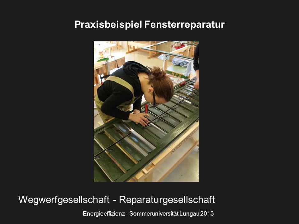Energieeffizienz - Sommeruniversität Lungau 2013 Praxisbeispiel Fensterreparatur Wegwerfgesellschaft - Reparaturgesellschaft