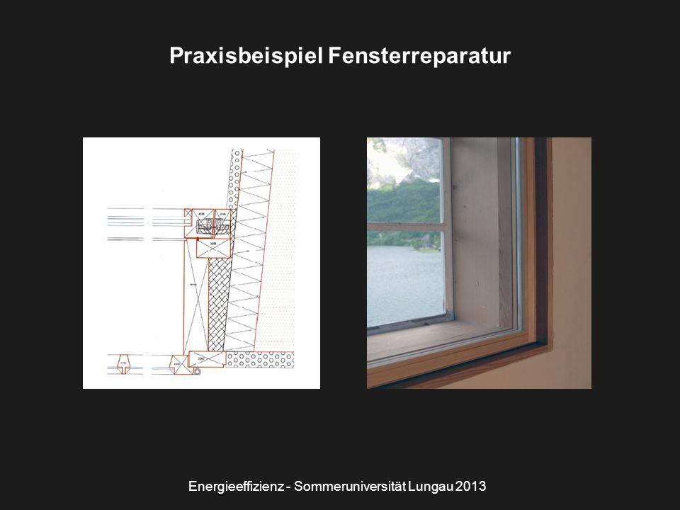 Energieeffizienz - Sommeruniversität Lungau 2013 Praxisbeispiel Fensterreparatur