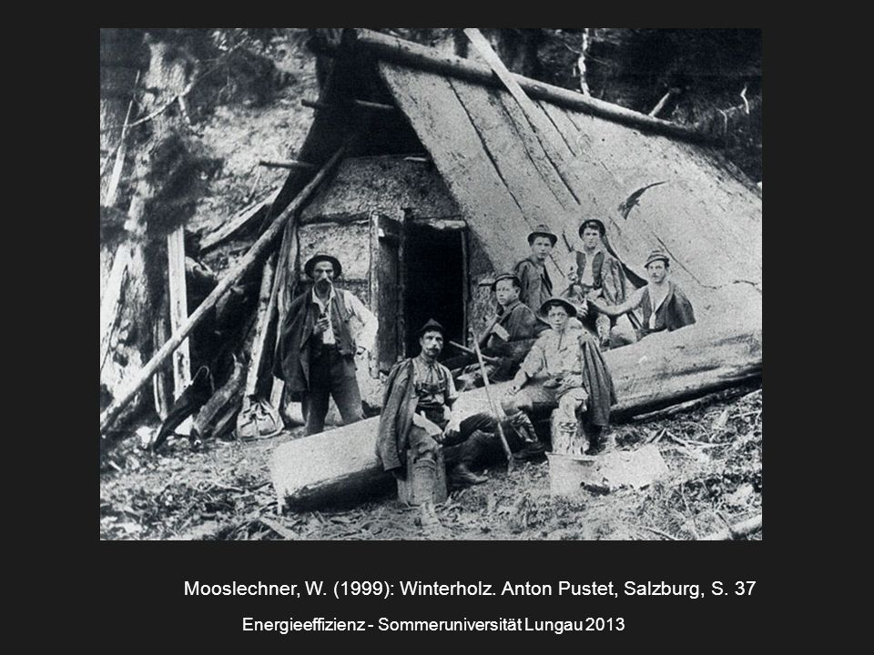 Mooslechner, W. (1999): Winterholz. Anton Pustet, Salzburg, S. 37