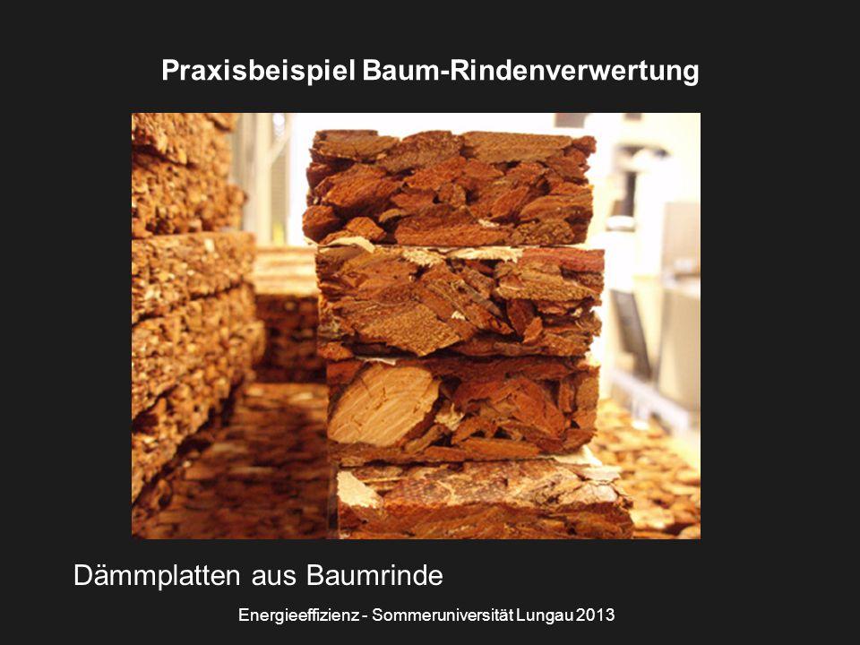 Energieeffizienz - Sommeruniversität Lungau 2013 Praxisbeispiel Baum-Rindenverwertung Dämmplatten aus Baumrinde