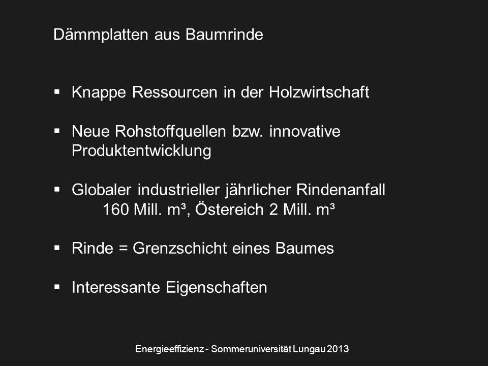 Energieeffizienz - Sommeruniversität Lungau 2013 Dämmplatten aus Baumrinde  Knappe Ressourcen in der Holzwirtschaft  Neue Rohstoffquellen bzw.