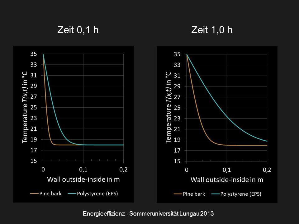 Zeit 0,1 hZeit 1,0 h Energieeffizienz - Sommeruniversität Lungau 2013