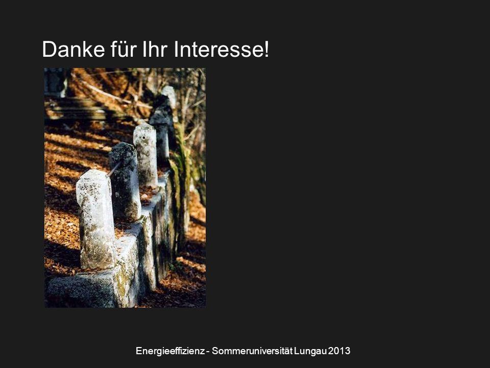 Energieeffizienz - Sommeruniversität Lungau 2013 Danke für Ihr Interesse!