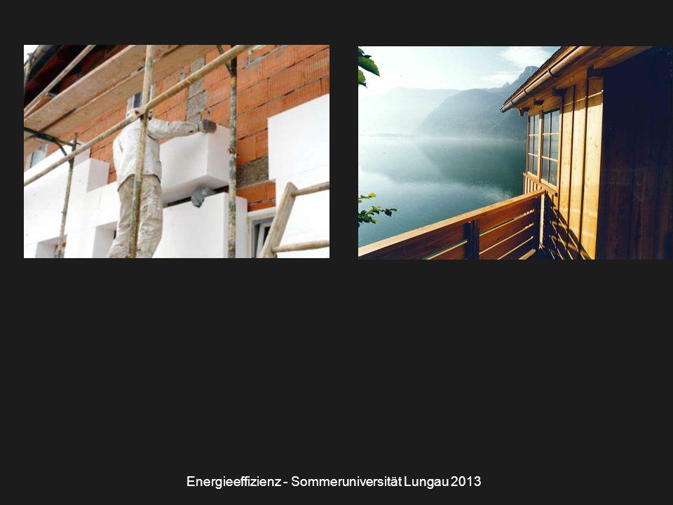 Energieeffizienz - Sommeruniversität Lungau 2013