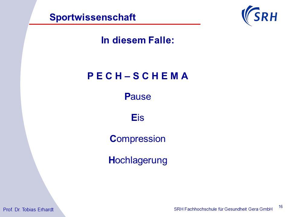 SRH Fachhochschule für Gesundheit Gera GmbH Sportwissenschaft Prof.