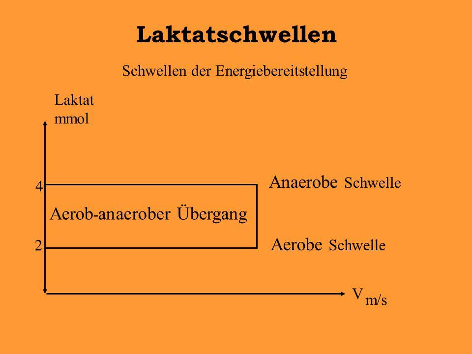 Schwellen der Energiebereitstellung Laktatschwellen V m/s Aerob - anaerober Übergang 2 4 Aerobe Schwelle Anaerobe Schwelle Laktat mmol