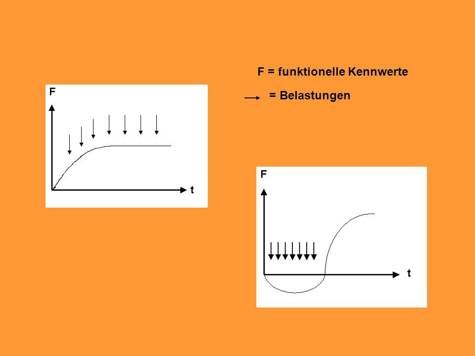 F = funktionelle Kennwerte = Belastungen