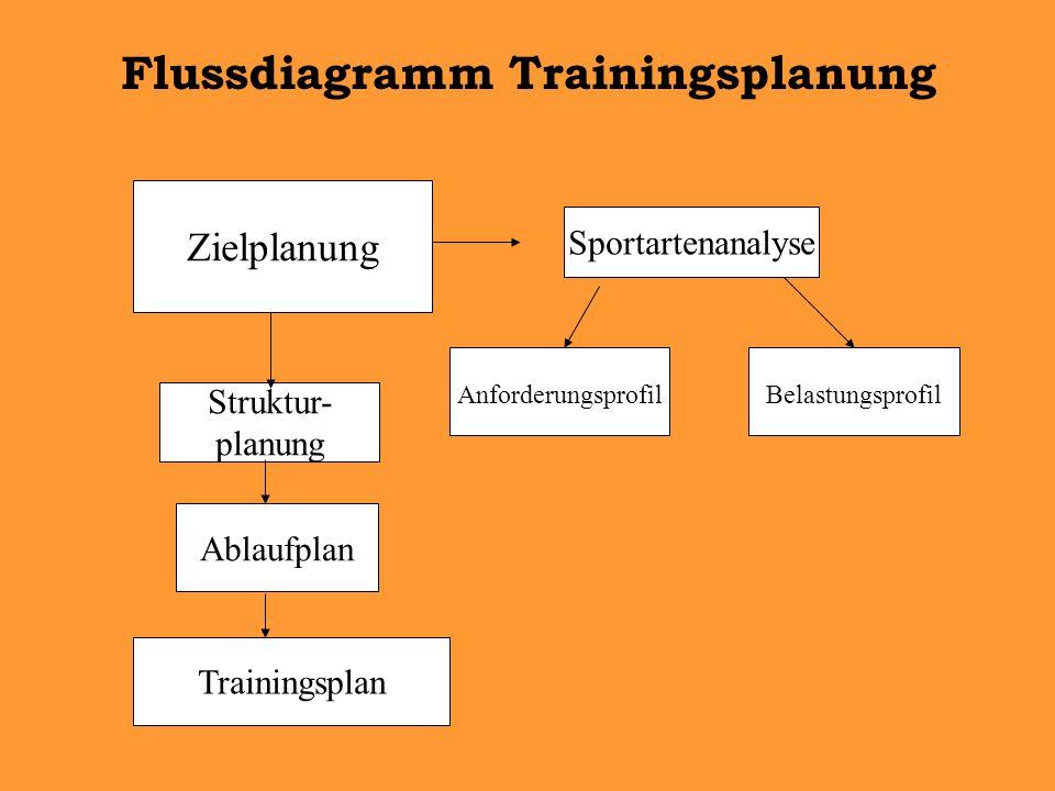 Flussdiagramm Trainingsplanung Zielplanung Sportartenanalyse AnforderungsprofilBelastungsprofil Struktur- planung Ablaufplan Trainingsplan