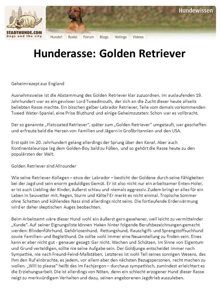 Hunderasse: Golden Retriever Geheimrezept aus England Ausnahmsweise ist die Abstammung des Golden Retriever klar zuzuordnen.