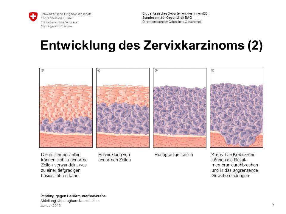Impfung gegen Gebärmutterhalskrebs Abteilung Übertragbare Krankheiten Januar 2012 Eidgenössisches Departement des Innern EDI Bundesamt für Gesundheit BAG Direktionsbereich Öffentliche Gesundheit Entwicklung des Zervixkarzinoms (2) 7 Die infizierten Zellen können sich in abnorme Zellen verwandeln, was zu einer tiefgradigen Läsion führen kann.