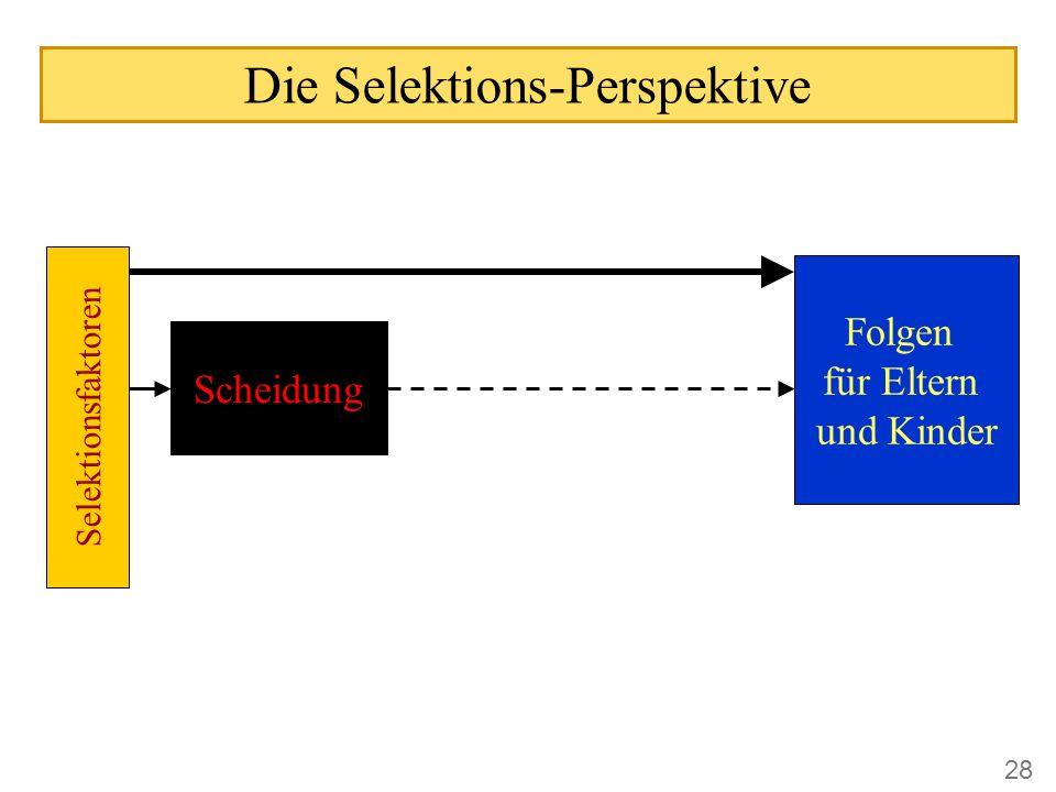 Die Selektions-Perspektive Scheidung Folgen für Eltern und Kinder Selektionsfaktoren 28