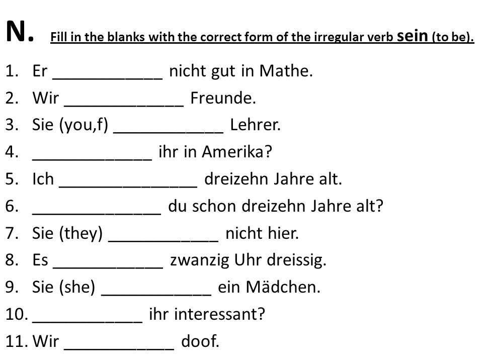 N. Fill in the blanks with the correct form of the irregular verb sein (to be).