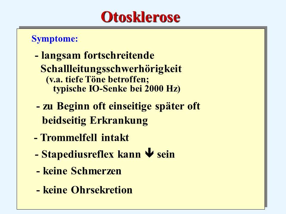 Symptome: - keine Ohrsekretion - langsam fortschreitende Schallleitungsschwerhörigkeit (v.a.