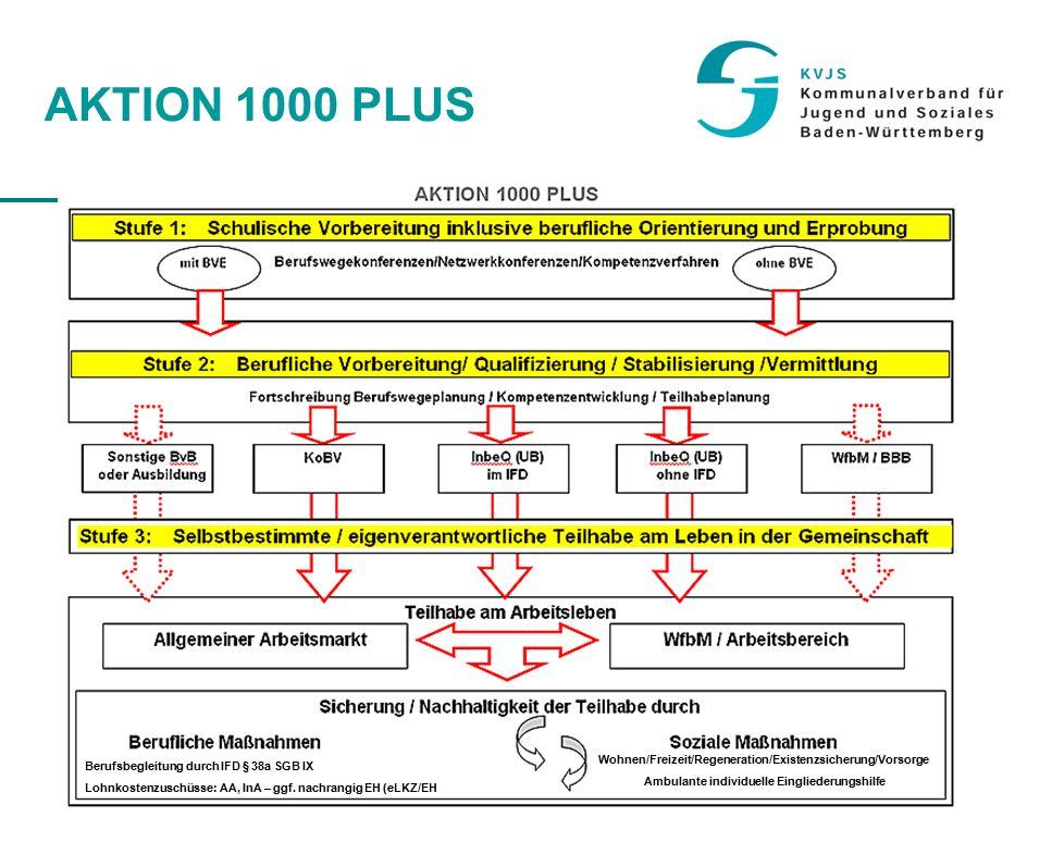 26 AKTION 1000 PLUS Berufsbegleitung durch IFD § 38a SGB IX Lohnkostenzuschüsse: AA, InA – ggf.