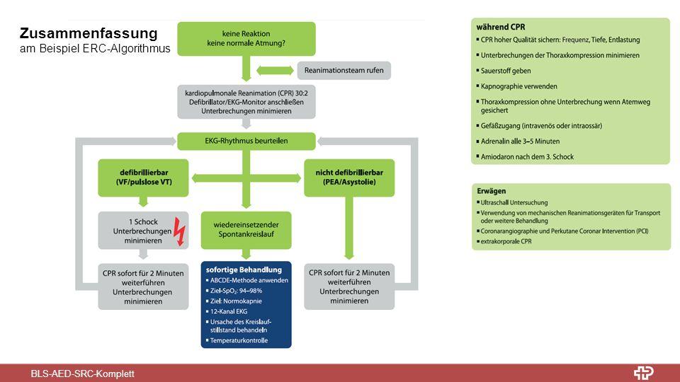 BLS-AED-SRC-Komplett Zusammenfassung am Beispiel ERC-Algorithmus
