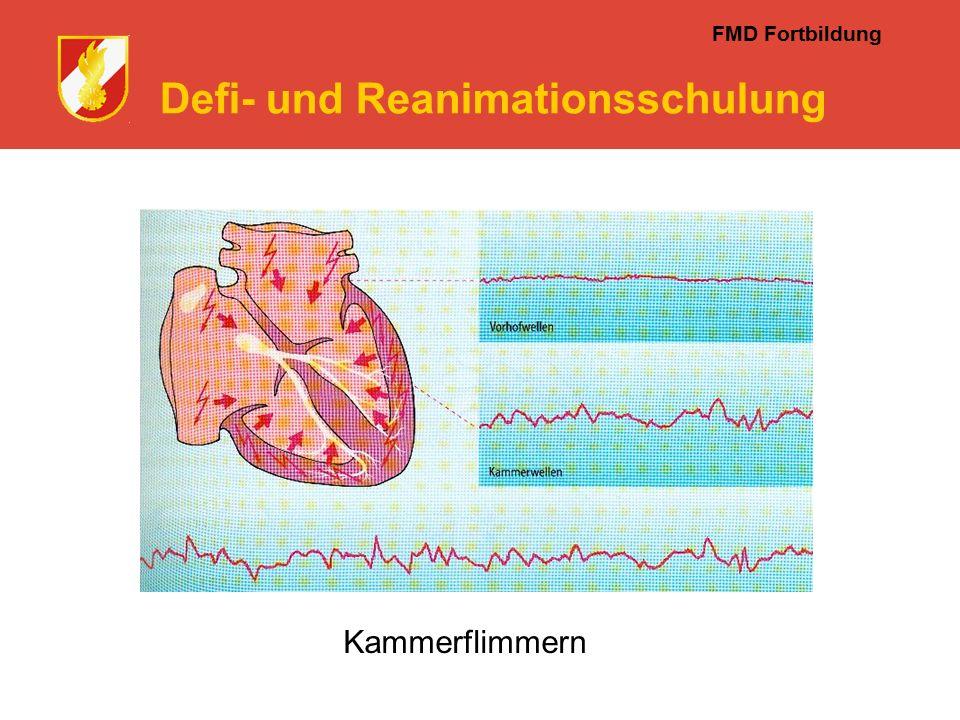 FMD Fortbildung Defi- und Reanimationsschulung Kammerflimmern