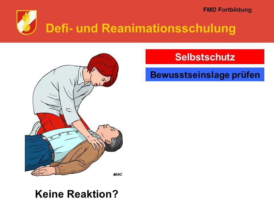 FMD Fortbildung Defi- und Reanimationsschulung Keine Reaktion Selbstschutz Bewusstseinslage prüfen